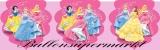 Fahnenkette Kindergeburtstag Dekoration, Prinzessinnen, Prismatik